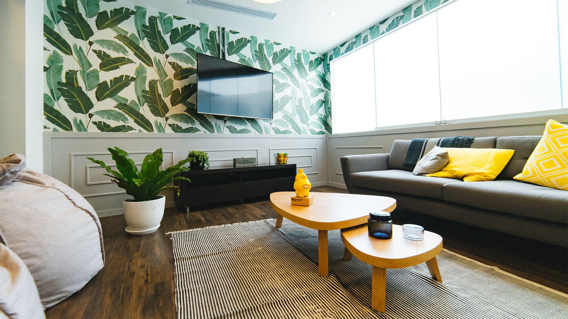 salon z kanapą, telewizorem, dywanem