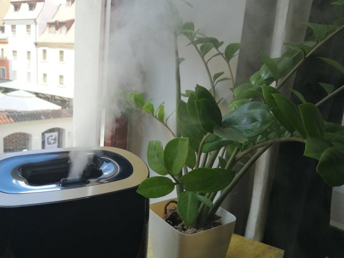 ultradźwiękowy nawilżacz powietrza na parapecie obok kwiatka