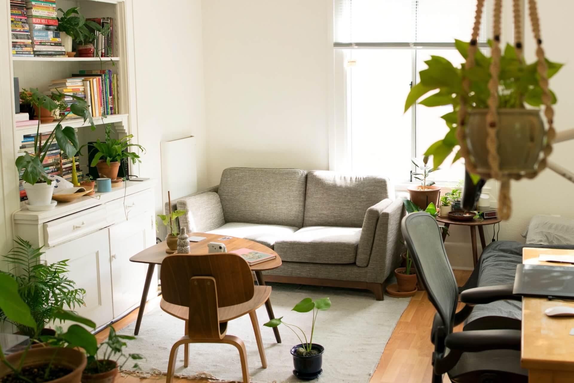 salon z kwiatami, kanapą i stolikiem