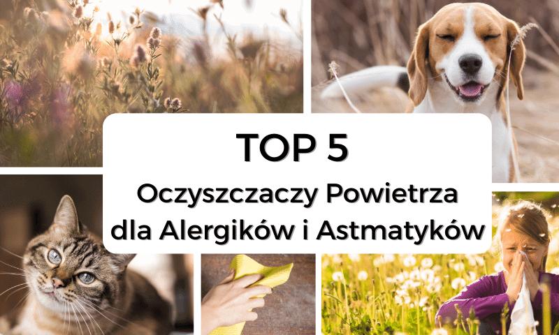 Top 5 oczyszczaczy powietrza dla alergików i astmatyków