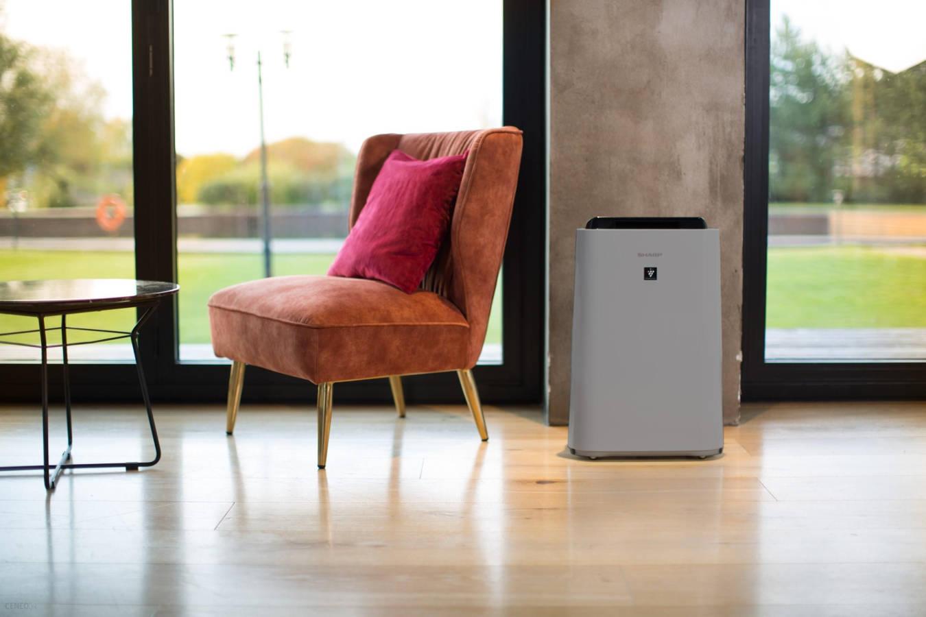 Oczyszczacz powietrza Sharp UA-HD40E-L w pomieszczeniu