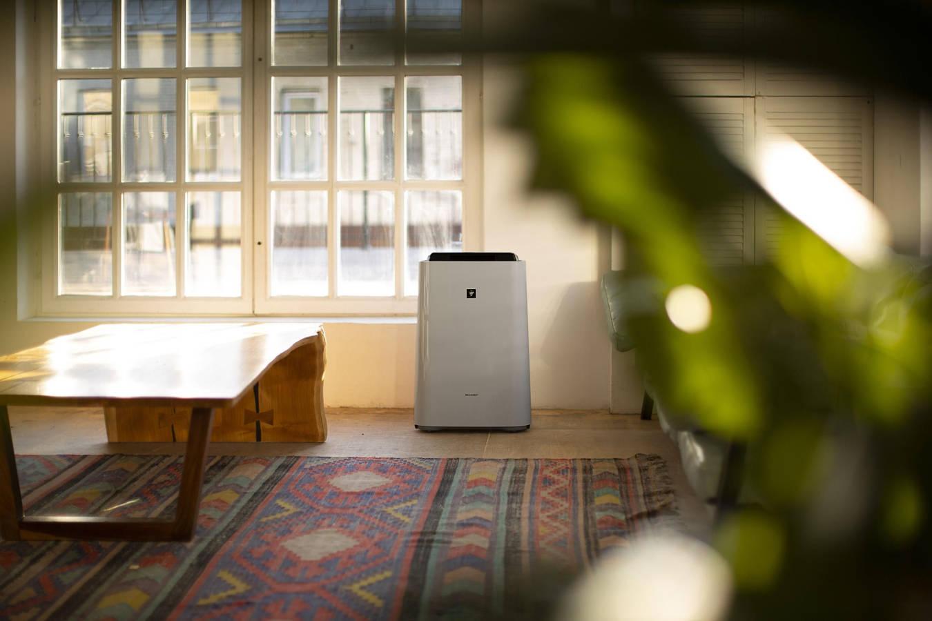 Oczyszczacz powietrza Sharp UA-HD50E-L w pomieszczeniu